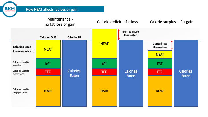 700 calories a day - chart showing how NEAT levels affect fat loss