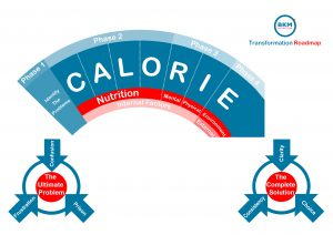 The CALORIE system infographic