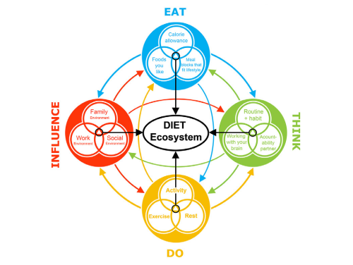 how good is your diet diagram